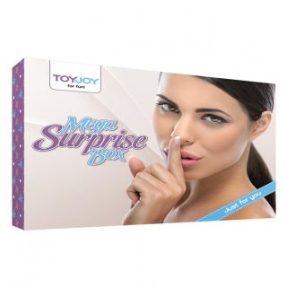 ToyJoy Mega Surprise Box (17 stuks)